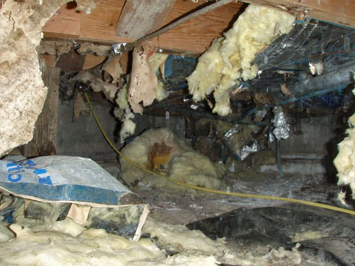 A Messy Crawl E Filled With Rotting Insulation And Debris In Palo Alto